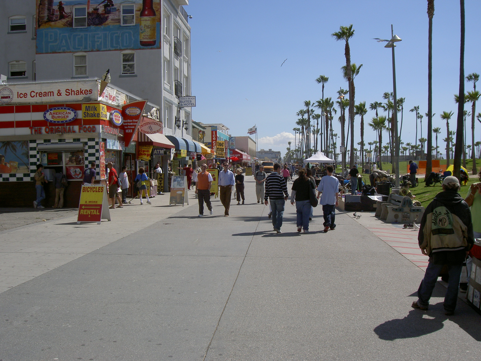 zambiese venice beach - photo#25