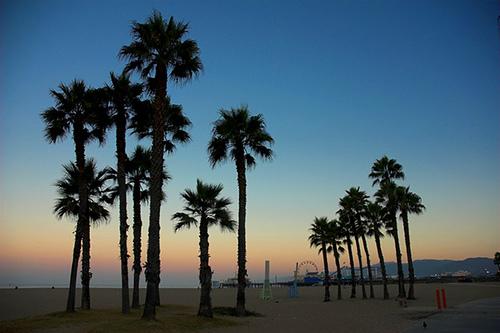 Santa Monica Beach Cams Live Cams Hdontap Hdontap